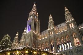 Корпоративная поездка в Вену