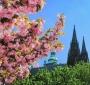 Весенние каникулы и 8 марта в Праге